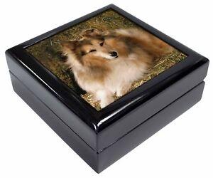Sheltie on Hay Bale Keepsake/Jewellery Box Christmas Gift, AD-SE55JB