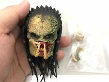 Hot Toys 1/6 Scale Wolf Predator Figure Perfect Head Sculpt