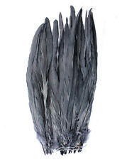 """25 pcs 16-18"""" long Dark Grey Dyed Rooster COQUE tail Feathers for crafting, NEW"""