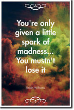 ROBIN WILLIAMS QUOTE POSTER - PHOTO PRINT ART GIFT - SPARK OF MADNESS