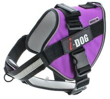Harnais Neocity I-Dog taille XS