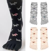 Women Ladies Cute Cartoon Five Fingers Trainer Toe Long warm Socks Winter