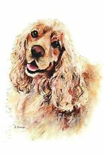 American Cocker Spaniel #1 Dog Art Aceo Card Print by A Borcuk