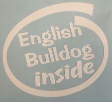 ENGLISH BULLDOG INSIDE ON BOARD CAR WINDOW STICKER DECAL WHITE ALL COLOURS MADE