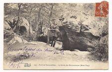 forêt de fontainebleau , la grotte des montussiennes