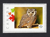lq. OWL  custom/personalized Postage Stamp MNH Canada 2015 p15/01sn3