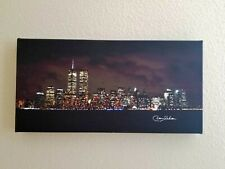 The Lights of Downtown New York City With WTC - Canvas Poster 10x20 inch - NEW!
