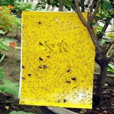 Big Area Outdoor Yellow Hanging Sticky Glue Flying Pest Insect Trap Catchers Bug