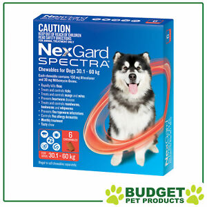 NexGard Spectra Chewables For Dogs Red 30.1-60kg 6 Pack