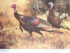 1984 Rio Grande Turkey Ken Carlson 1st Texas Stamp Print  REDUCED  New Condition