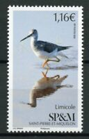 Saint-Pierre & Miquelon SP&M Birds on Stamps 2020 MNH Limicole Shorebirds 1v Set