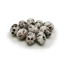 10Pcs Dollhouse Resin Speckled Eggs 1:6 Miniature Food Decor Accessories