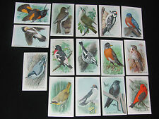 Vintage Church & Dwight Useful Birds of America Series 9 Complete Set 15 Cards