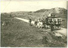 DIE LETZTE COCHE DE CABALLOS, original-fotografie,Von 1908