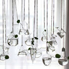 Clear Flower Hanging Vase Planter Terrarium Container Glass Home Party Decor Hot