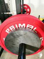 """x2 10kg Thin Olympic Weights for 2"""" inch Hole Barbell Bars (x2 10kg plates)"""
