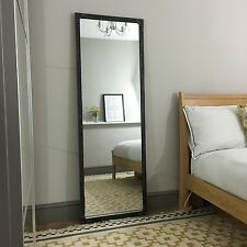 Tall Mirror artisan urban vintage Pewter colour finish, metal frame