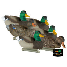 NEW LUCKY DUCK DECEPTION SERIES FLOATING MALLARD DUCK DECOYS COLLAPSIBLE 6-PACK