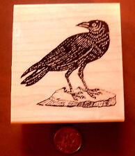 Crow, black bird  rubber stamp WM P9