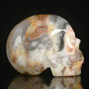 """1.97""""Natural Geode Crazy Lace Agate Carved Skull Metaphysic Healing Power #33U1"""