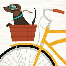 DACHSHUND SHORT SMOOTH HAIRED Retro Art Poster Print - Daxi in Bicycle Basket