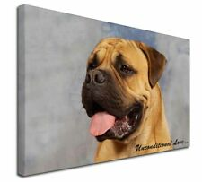 More details for bullmastiff dog-with love x-large 30