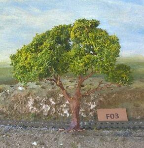 AUSTRALIAN MODEL GUM TREES  HO  OO  Lot F03