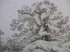 FRANZ RECHBERGER ´DER GROSSE EICHENBAUM; THE LARGE OAK TREE´ NAGLER 2; 1797