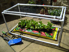 Lifting lid strawberry fruit cage  1 m by 1 m