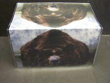 BROWN BEAR SWIMMING A RIVER   VINYL CHECKBOOK COVER