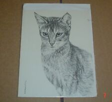 Lovely Abyssinian Cat Blank Greeting Card