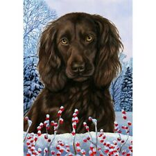 Winter Garden Flag - Boykin Spaniel 154621