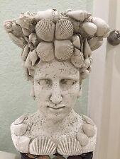 Seashell head