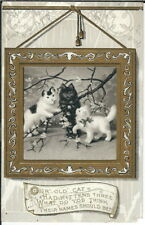 BB-112 Our Old Cat had Kittens Three, 1907-1915 Golden Age Postcard