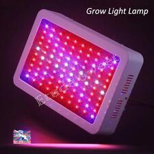 300W LED lampe de cultiver spectre complet fleur végétale pour plantes médicales