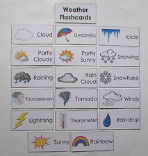 Teacher Made Learning Resource Word Wall Weather Flashcards
