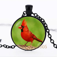 Red cardinal bird photo Glass Dome black Chain Pendant Necklace wholesale