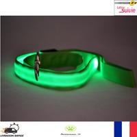 Laisse Nylon Lumineuse à Led Verte pour Chien Neuf Promenade Nocturne Sécurité