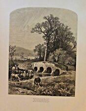 Cattle, Cows Watering, Farm Scene, Poem Verse, Vintage 1874 Antique Art Print