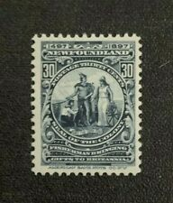 Newfoundland Stamp #72 MNH