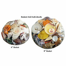 8 inch Sea-Shell Basket Pack; Great Gift Basket with Genuine SeaShells!