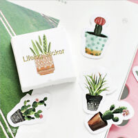 45Pcs Cactus Mini Paper Sticker Decor DIY Ablum Diary Scrapbooking Sticker t