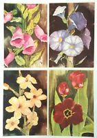 Set of 4 Flower Watercolor Art Prints Foxgloves Morning Glory Jasmine Primrose
