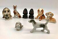 180 colorful dog bones Pomeranian address labels WATERPROOF laser print