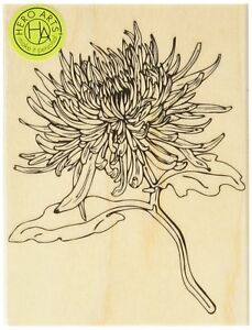 """Mum Flower Rubber Stamp Hero Arts New 4.25"""" High Wood Mounted Floral"""