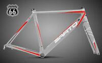 SARTO DINAMICA Carbon Road Bike (Frame Set), color: Gray Red, Size M