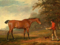 Oil painting portrait young man feeding his horse with little dog Hand painted