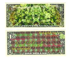Dollar Glücksbringer Dollar nur für Dich