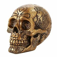Ancient Egyptian Inspired Nefertiti King Tut Ankh Golden Skull Collectible