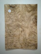 CONSECUTIVE SHEETS OF EUROPEAN BURR WALNUT VENEER 20 X 30 cm EU#140 MARQUETRY